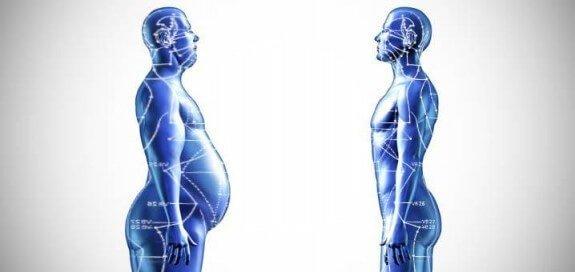 Spiruline & Perte de poids