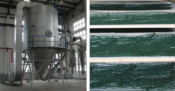 séchage-la-spiruline-industriel-contre-naturel